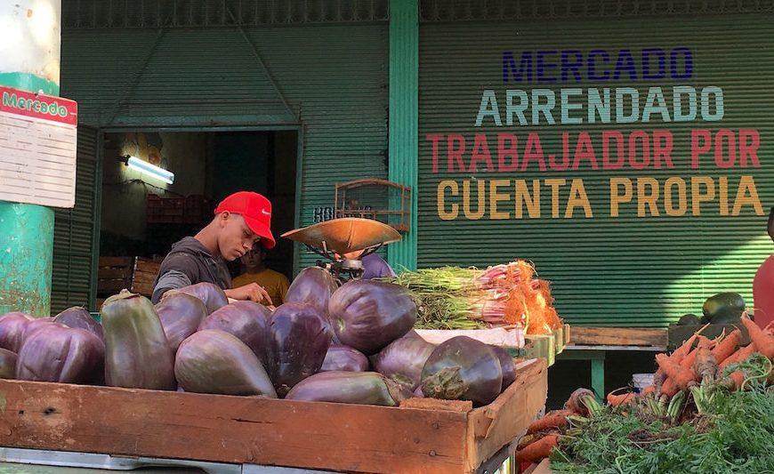APROBADAS NUEVAS MEDIDAS QUE ORDENAN Y AMPLÍAN EL TRABAJO POR CUENTA PROPIA EN CUBA